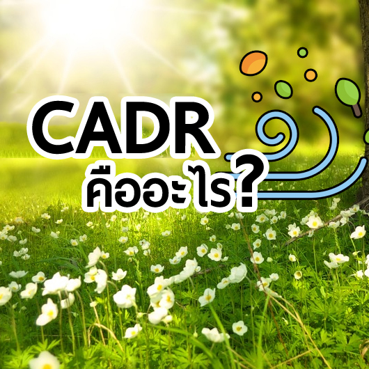 ค่า CADR คืออะไร และปริมาณไหนถึงจะเหมาะสมกับห้องคุณ
